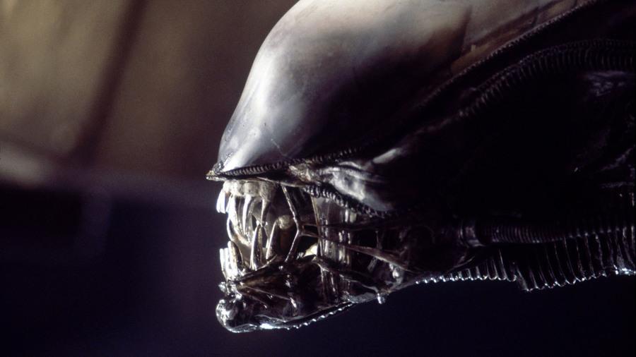 Alien07062017_large