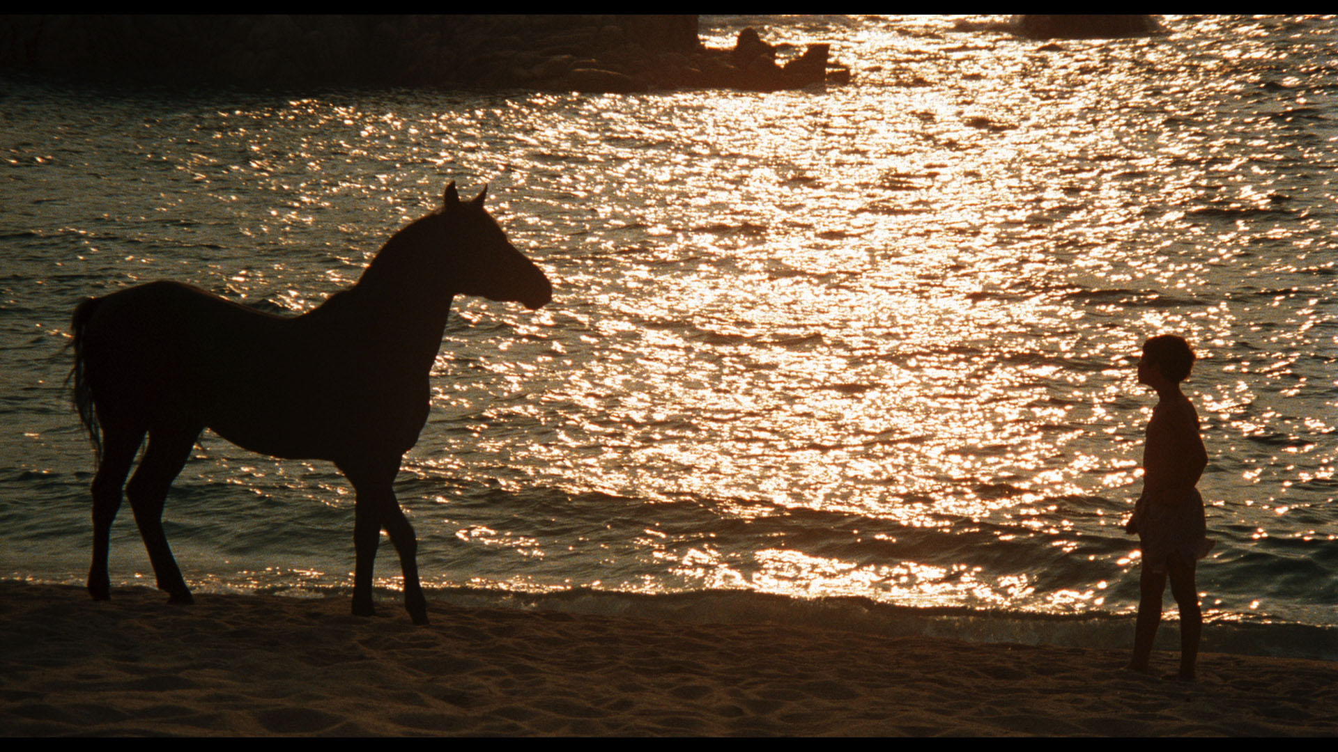 Caleb Deschanel on Shooting The Black Stallion