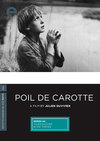 Poil de carotte box cover