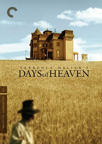 Criterion new haven movie