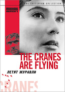 The Cranes Are Flying (Criterion DVD)