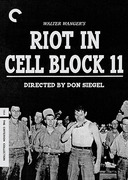 Riot in Cell Block 11 (Criterion DVD)
