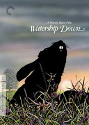 Watership Down (Criterion DVD)