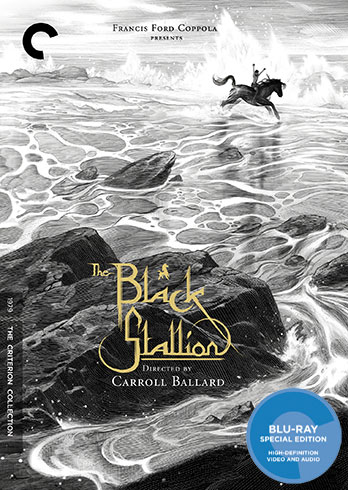 Ray Price Ford >> The Black Stallion (1979) - The Criterion Collection