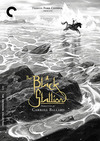 The Black Stallion (Criterion DVD)