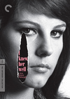 I Knew Her Well (Criterion DVD)