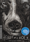 Heart of a Dog (Criterion Blu-Ray)