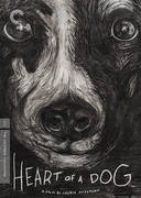 Heart of a Dog (Criterion DVD)