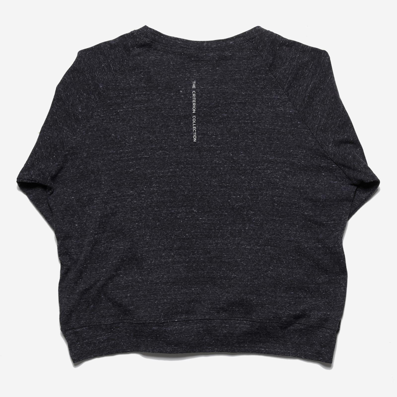 Women's Criterion Raglan Sleeve T-shirt