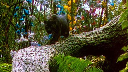 Jungle Book Film Still
