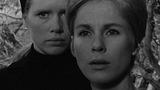 Film_701w_persona_w160