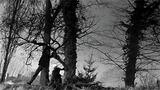 Film_728w_sundaysandcybele_w160