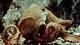 Painleve_octopus_still_w80