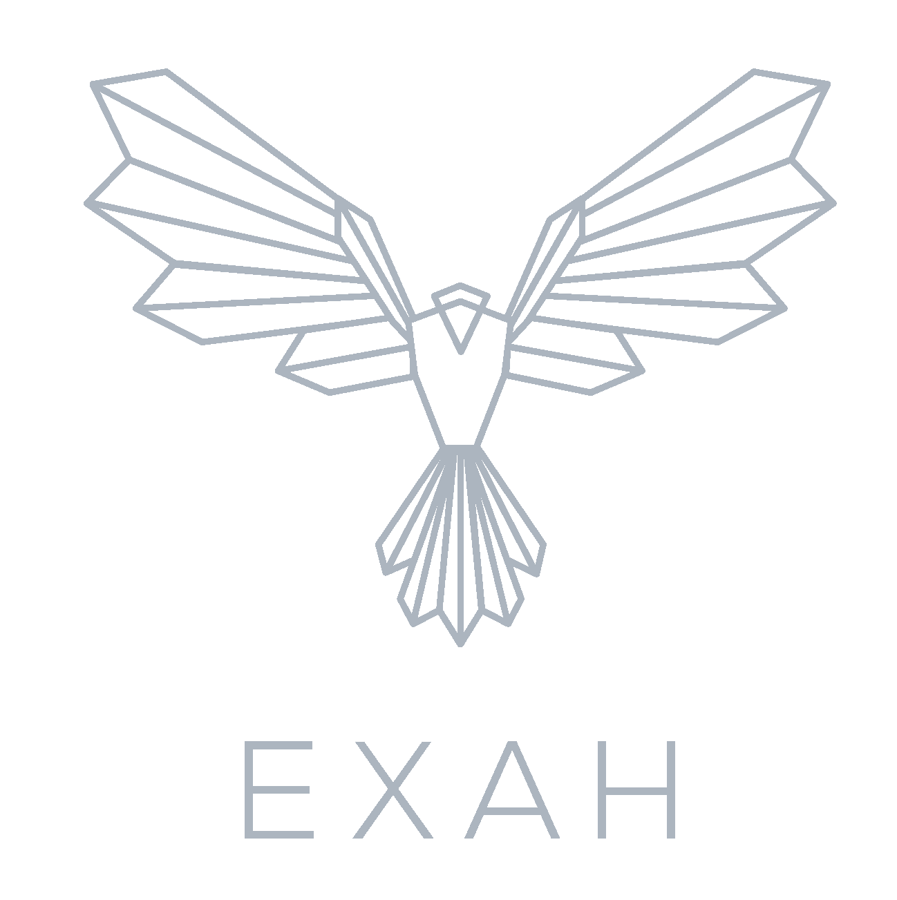 EXAH Consulting Partner