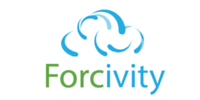 Forcivity - Business Experts and Salesforce Gurus