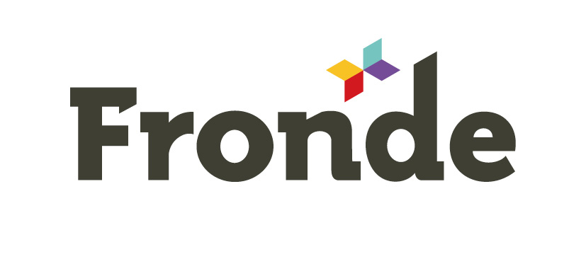 Fronde Systems Group Limited