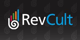 RevCult - Salesforce Security & Governance