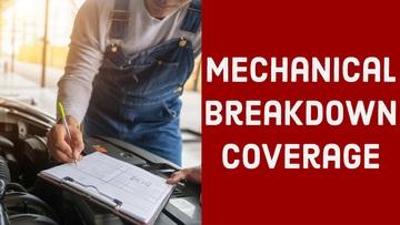 Thumbnail mechanical breakdown