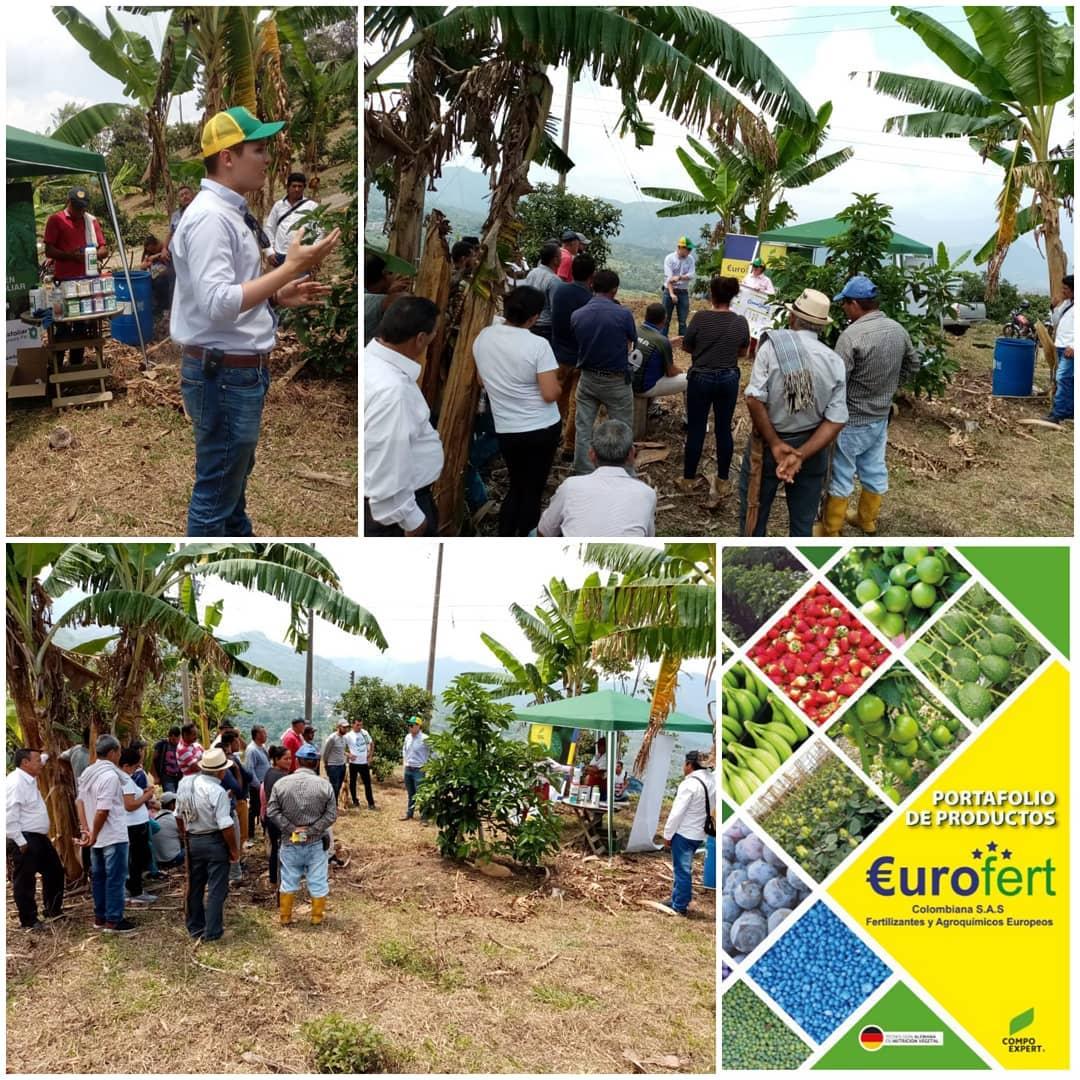 Eurofert, especialistas en cultivos tecnificados y de agroexportación