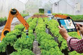 Nuevas tecnologías que facilitan el trabajo del campo