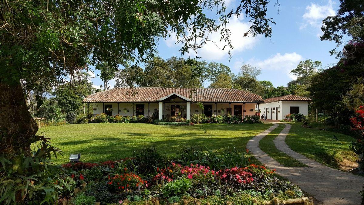 Hacienda de café El Roble entre las 5 mejores del mundo