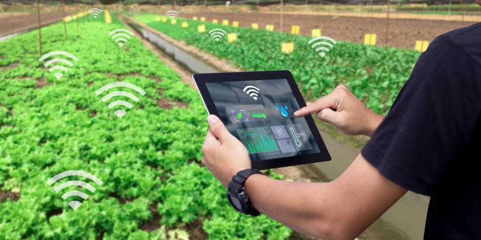 'AgTech' o Agrotecnología: qué es y su importancia en la actualidad