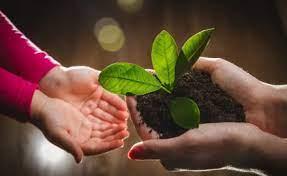 10 empresas con practicas sostenibles