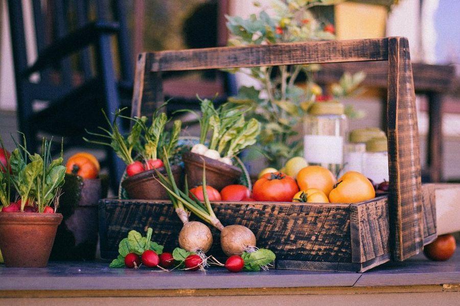 Cinco vegetales y hortalizas fáciles de cultivar en casa y sus beneficios