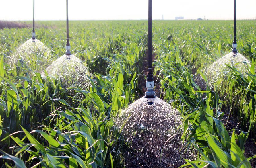 Las ventajas de los sistemas de riego más usados en el mundo para los cultivos