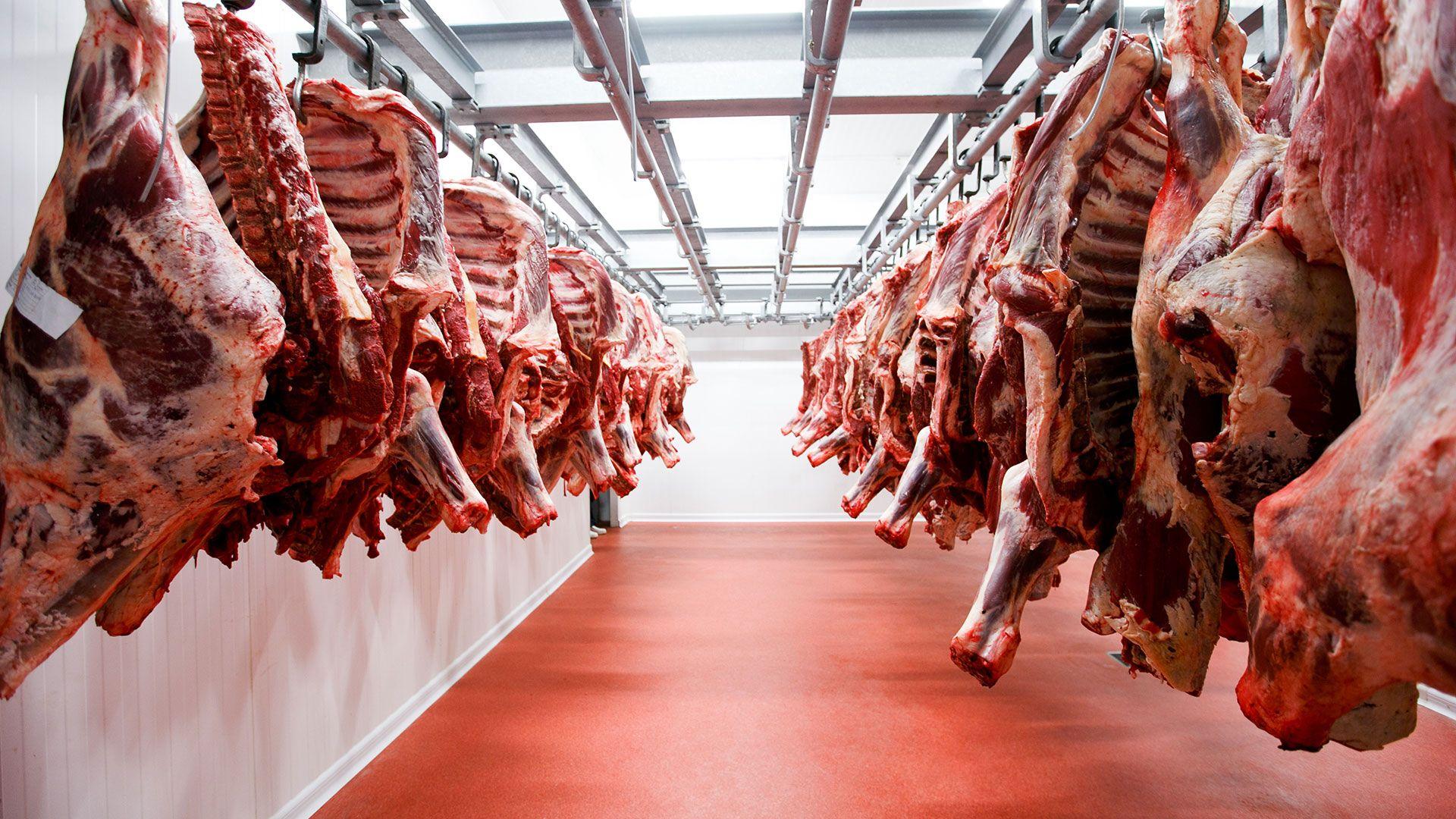Exportaciones de carne colombiana van a romper récord  en 2021 según Fedegán y el Dane