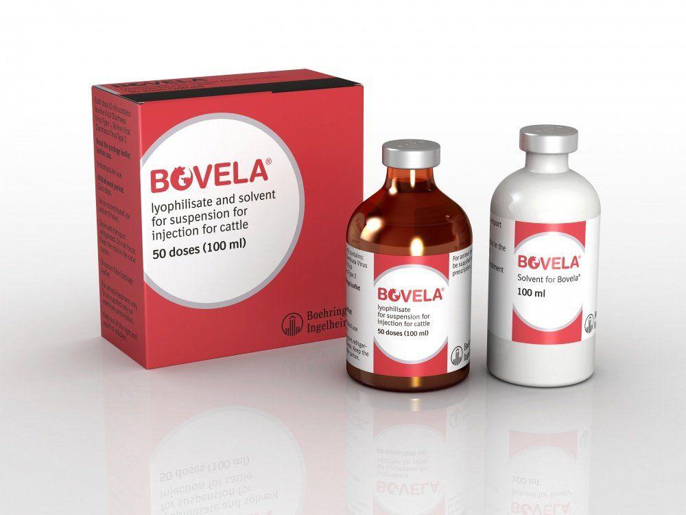 Aprueban el uso de BOVELA® en Colombia, una vacuna eficaz para el virus de la Diarrea Viral Bovina (DVB)