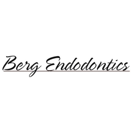 Berg Endodontics