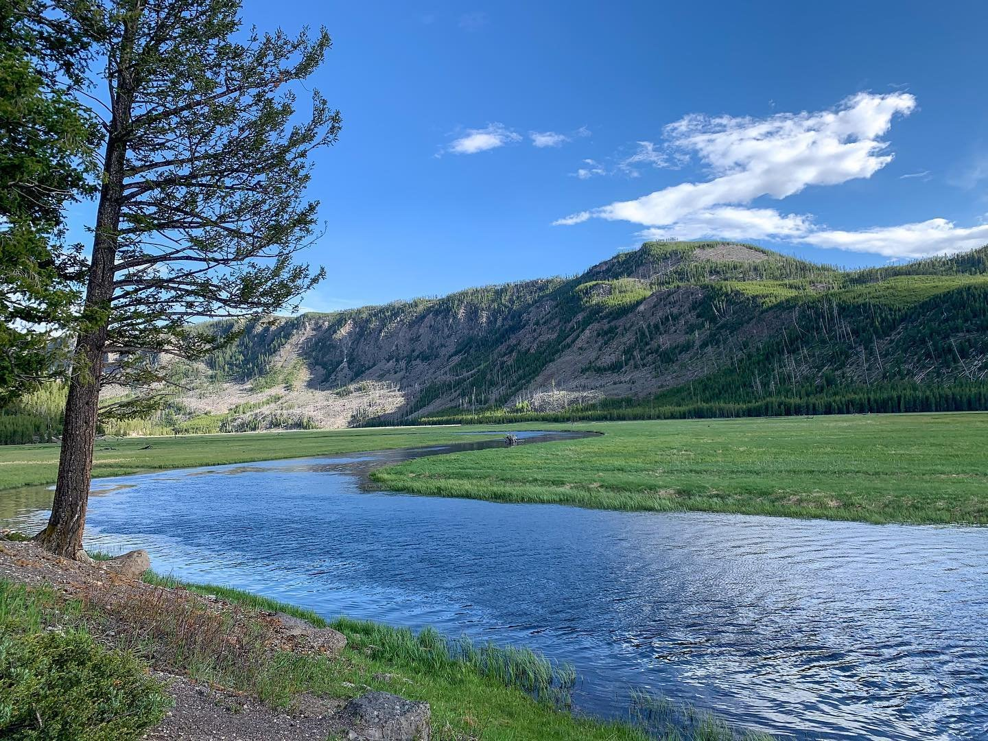 Photo by user angiekickliter, caption reads I am so grateful, so blessed, so in awe at the beauty of this magical place. The Madison River and Mount Hayes along the West Entrance Road. #yellowstonenationalpark #madiaonriver #yellowstone  #fulltimerv #fulltimervliving #fulltimervlife #fulltimervers #fulltimerving #rvlife
