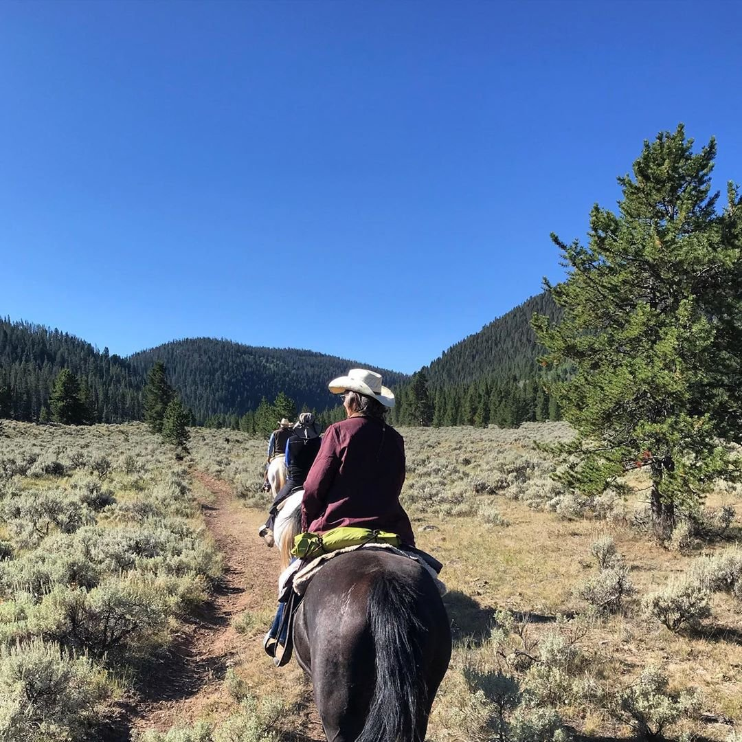 Photo by user elkhornranchmontana, caption reads Thanksgiving on the horizon has us thinking about all the summer rides we're thankful for! #elkhorn #thankful #summer #horsebackriding #vacation #montana #horses #adventure #ranchvacation #optoutside #bigsky #themountainsarecalling #thanksgiving