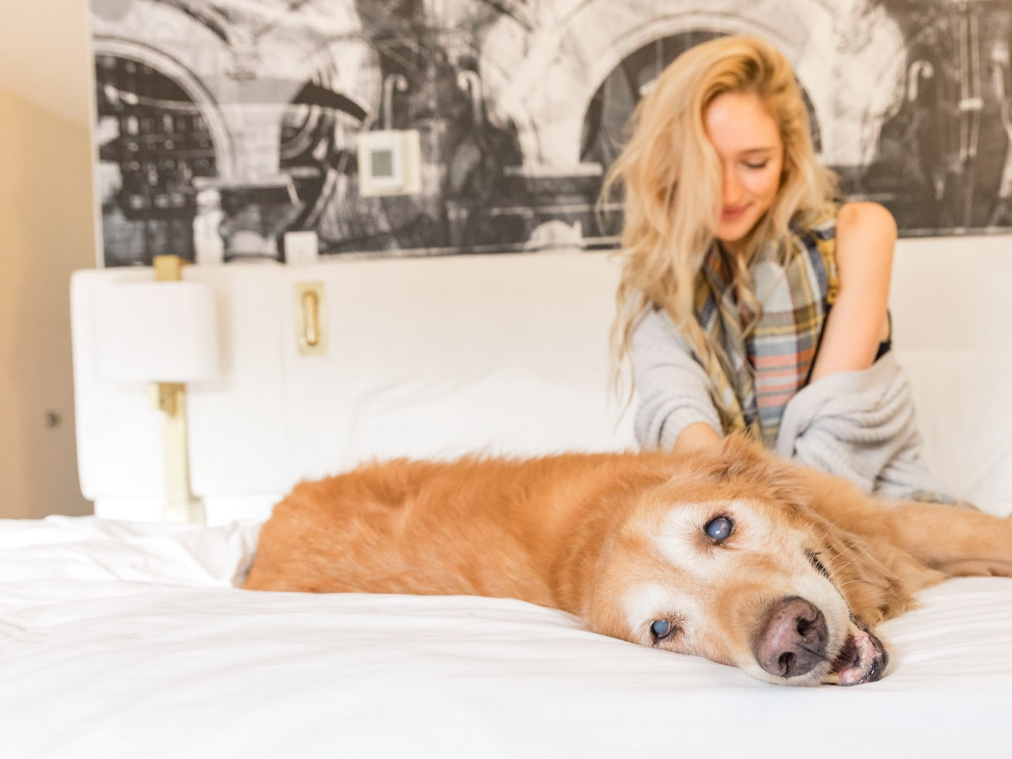 Woman with Golden Retriever in Avenue of the Arts bed