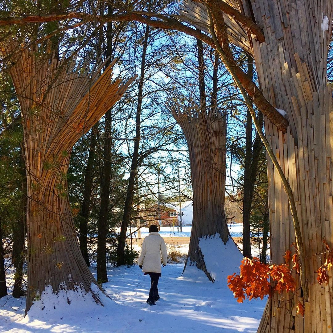Catch winter views, and amazing art this winter, in the Stevens Point Area.