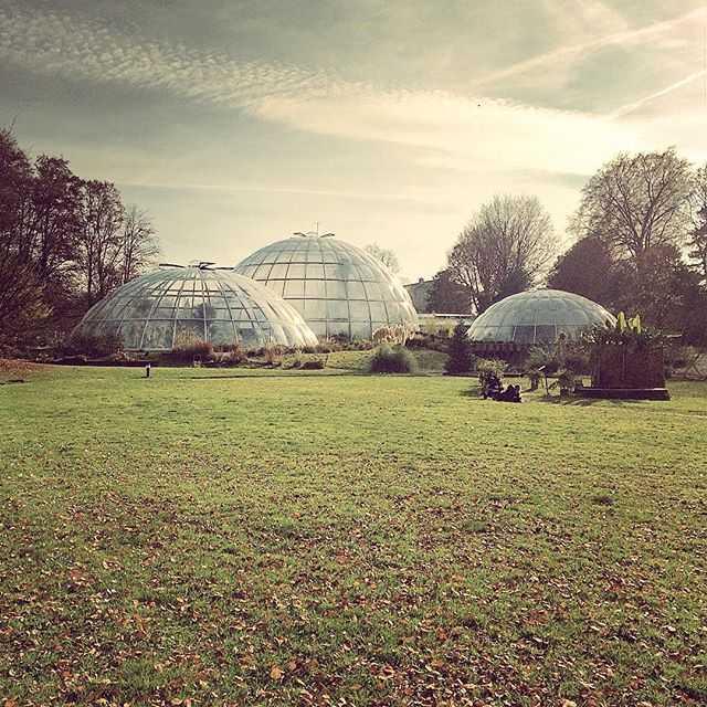 Botanical Garden of the University of Zurich