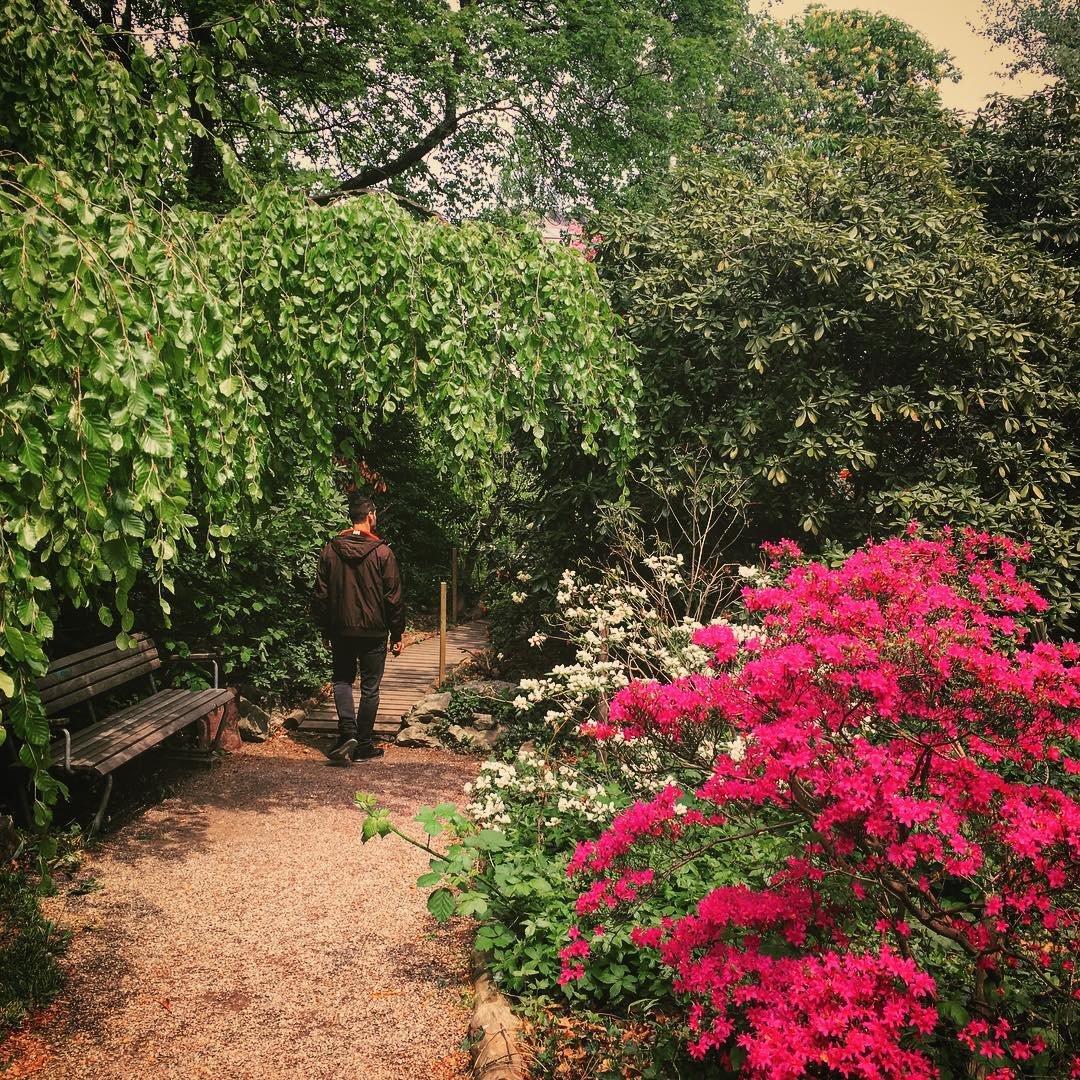 Old Botanical Garden, Zürich