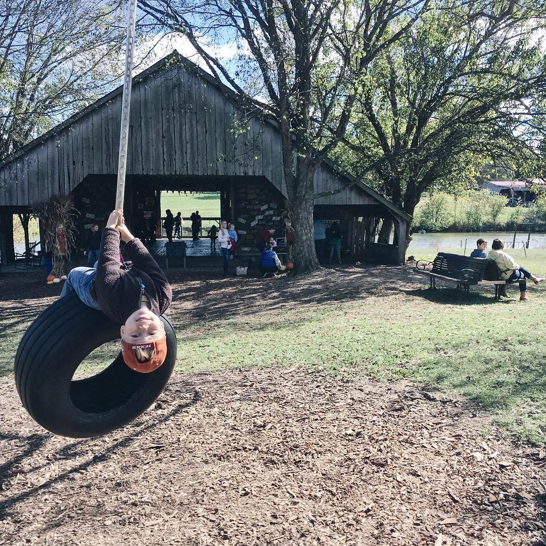 Your Guide To Getting Down On The Farm In Franklin