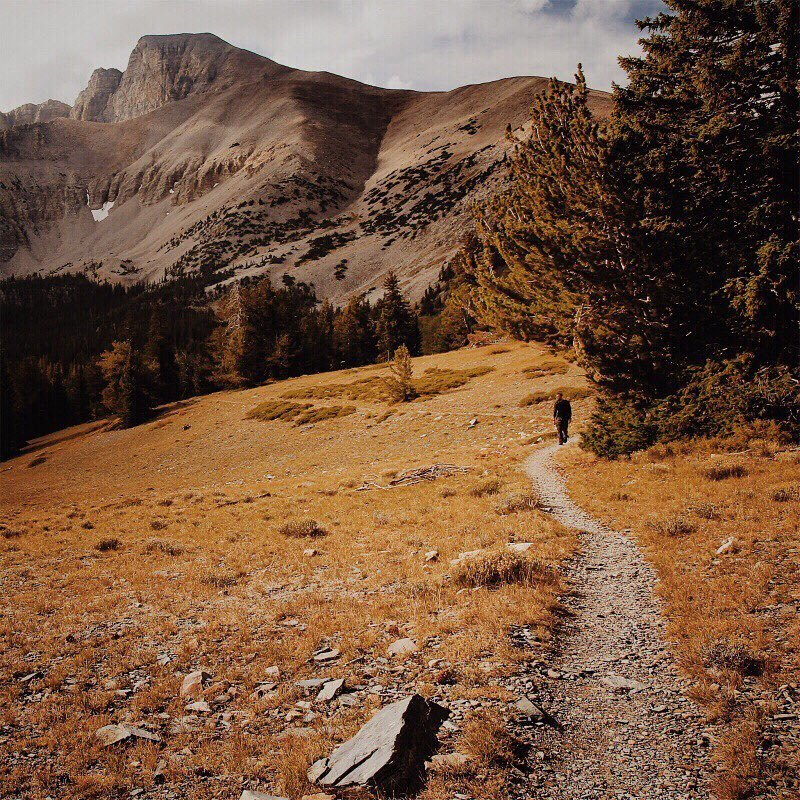LET'S GO FOR A HIKE in Great Basin National Park, Nevada. #greatbasinnationalpark #nevada