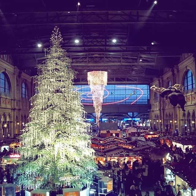Weihnachtsbaum zurich