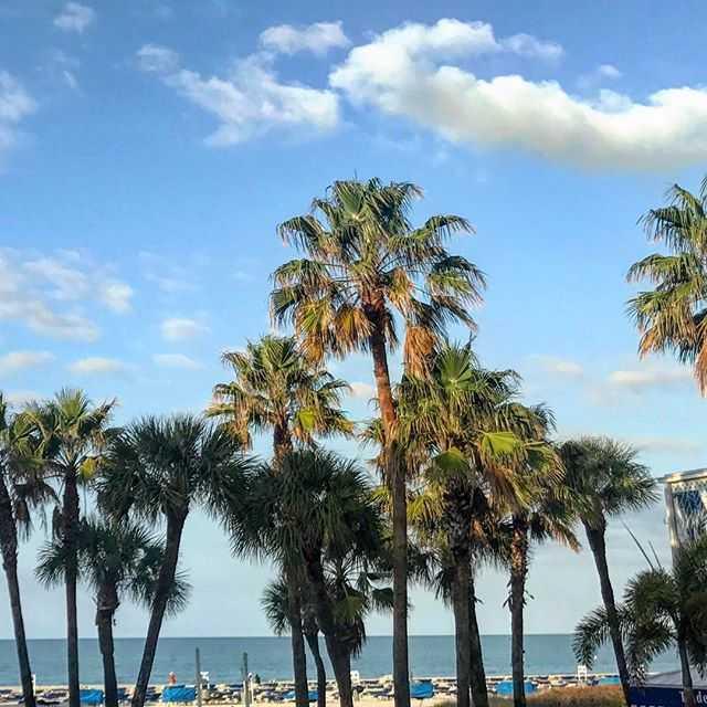 Hello Florida!!! #aoap2017