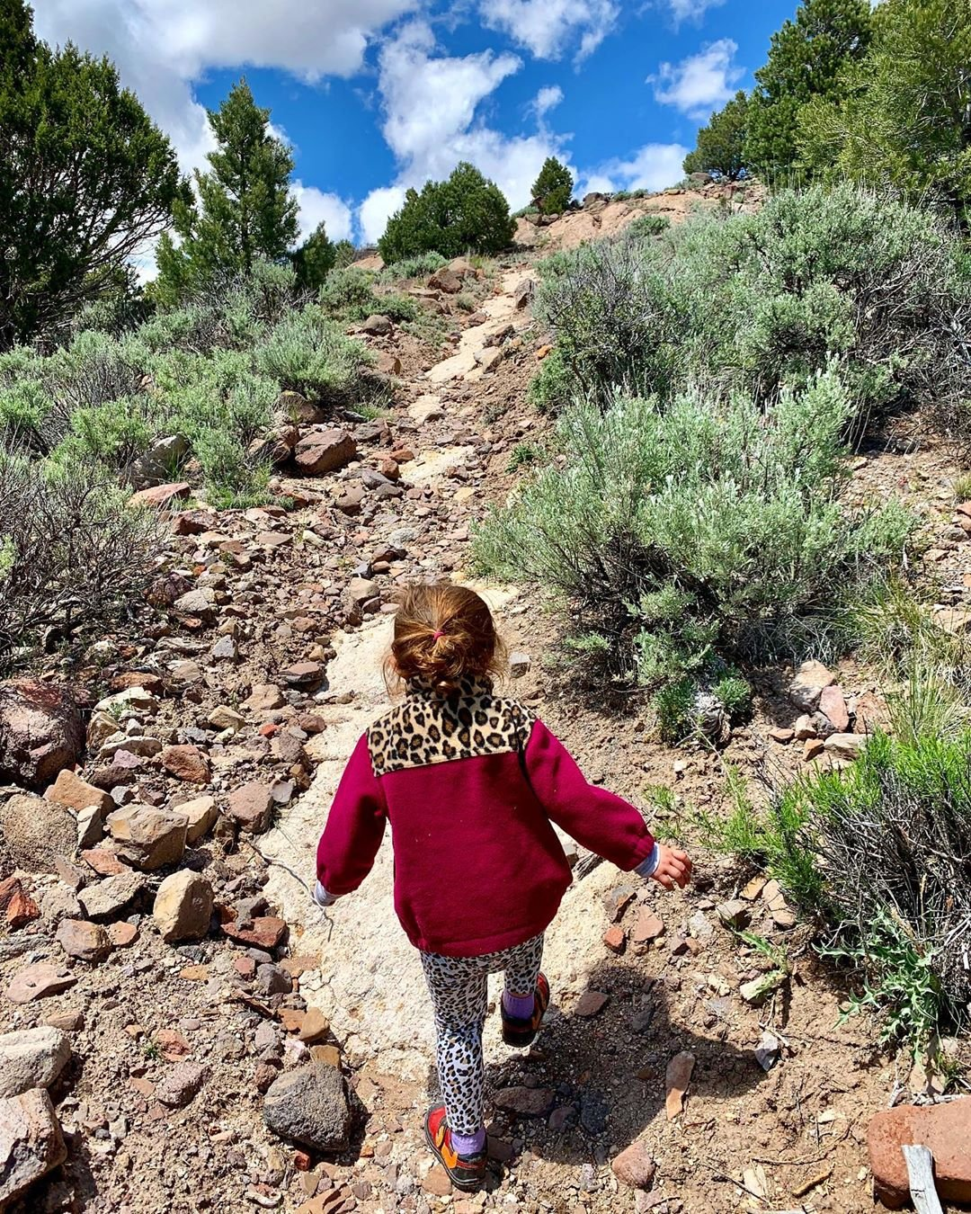 My little explorer was a trooper, until she wasn't. Just one little meltdown, I cal it a successful hike! Momma only had to carry her for 1.5 miles. She did about 3 all by herself!  #naturephotography #landscapephotography #naturelovers #nature_photo #exploring #adventure #minime #littleexllorer #hiking #littlehiker #getoutside #kidsexploring #nevada #travel #adventure #travelnevada #littleadventures_bigpictures #realkidsplayoutside
