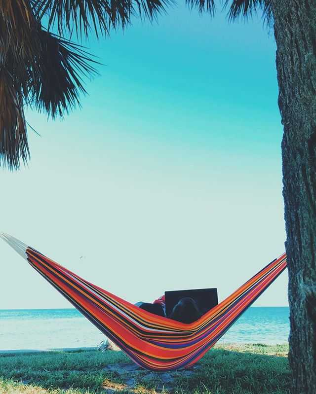 Brings a whole new meaning to Netflix and chill 🌴💻 . . . . . . . . #naturelover #naturelovers #vscophile #instagood #instadaily #visualsgang #vscodaily #visualsoflife #justgoshoot #vscocam #instamood #peoplescreatives #livefolk #beaches #beachvibes #hammocklife #photooftheday #palmtrees #stayandwander #exploremore #wanderlust #liveauthentic #vscogood_ #getoutstayout  #wildernessculture #aov #artofvisuals #hammock