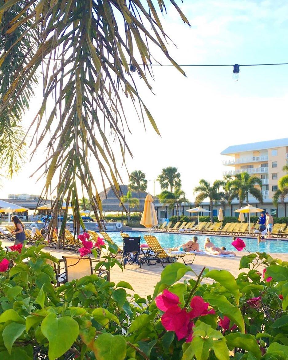 December in Florida 🦀. . #sundayfunday #stpetersburg #fl #stpetebeach #pool #beachbar #lovefl #floridalife #igersstpete #liveamplified #sharealittlesunshine #explore #getoutside #florida #tampabay #palmtrees #tropical #paradise #sunshinestate #adventure #gltlove #glt #postcardinn #vspc #cleargram #floridagreatshots #clearwater #soflo #salife