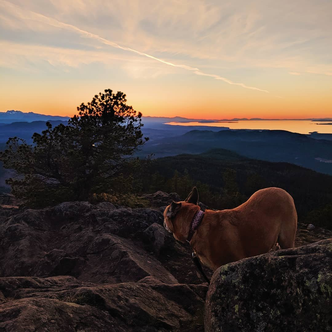 Photo by user melkarlik, caption reads Watching the sunset at the top of Mount Benson !
