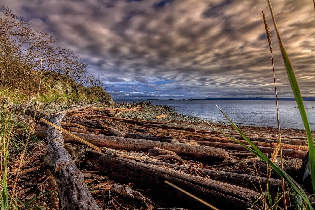 Photo by user pettitmusic, caption reads Pipers Lagoon in #nanaimo is always a quick drive from home and always beautiful. #piperslagoon #explorenanaimo #centralvanisle #explorevanisle #vancouverisland #beautifulbc #landscapephotography #landscapelover #landscape_captures #landscapes #landscape_photography #pixel_ig #landscape_hunter #photographerfocus #landscape_lovers #landscapecaptures #landscapestyles_gf #landscape_specialist  #kellypettitphotography #getlost #landscapephotomag #ig_landscape #trapping_tones #ig_masterpiece #ig_podium #splendid_earth #dream_image #gramslayers #agameoftones