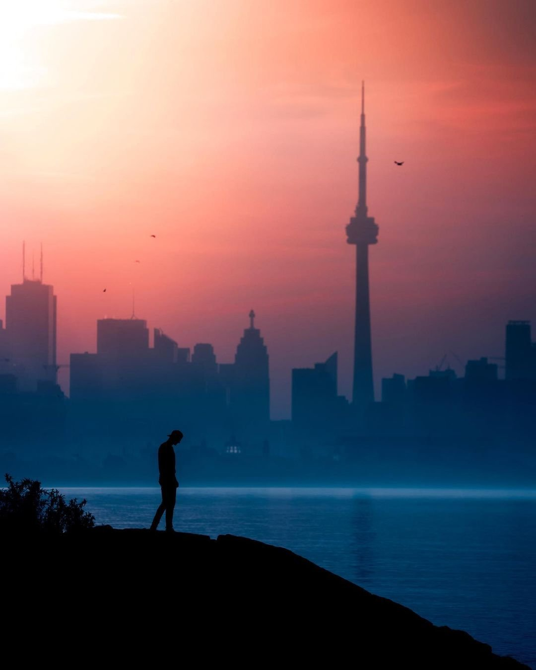 Top Picks For Pics 15 Places For The Best Photos In Toronto Destination Toronto