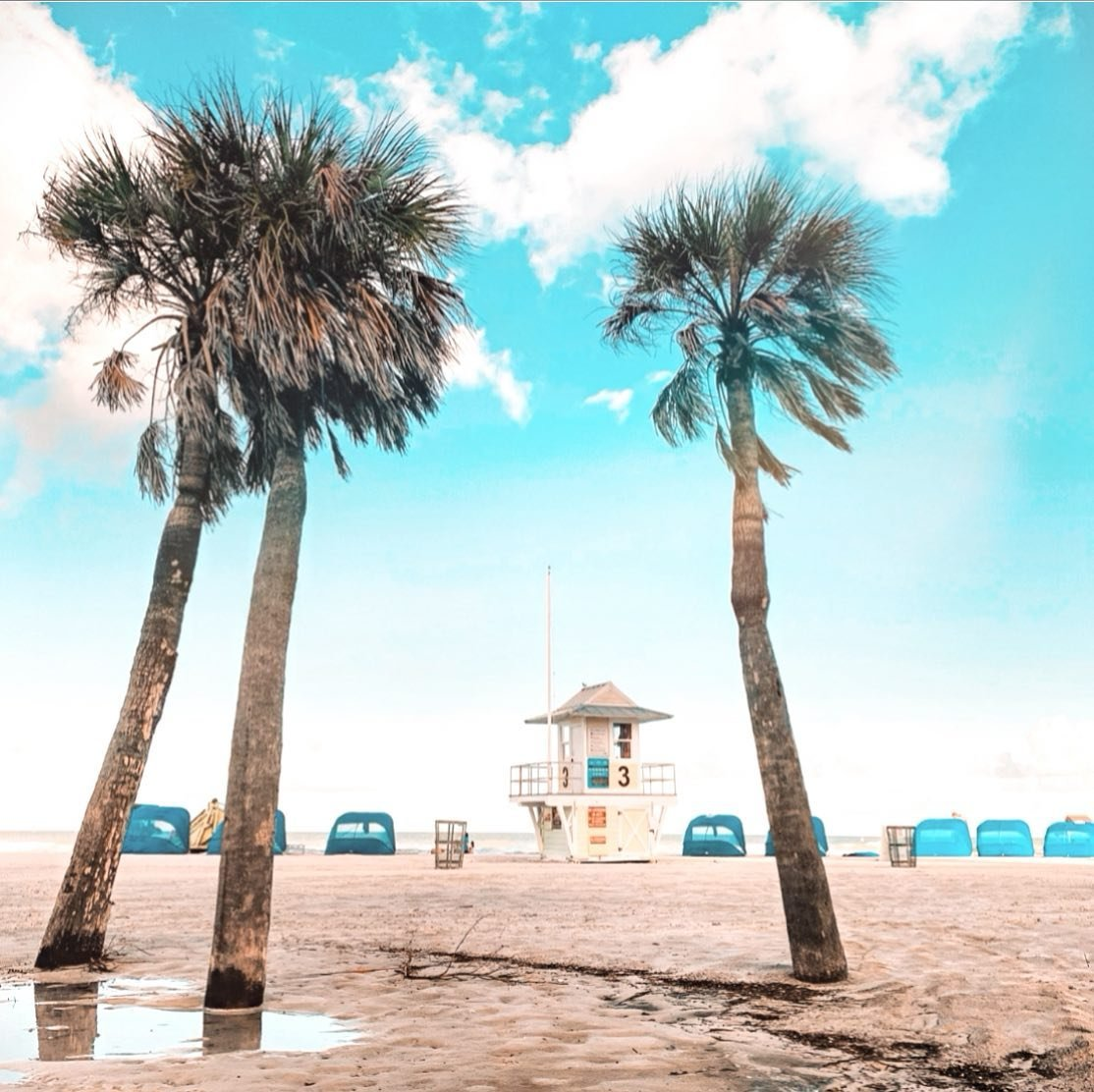 May your day be filled with blue skies, palm trees and some puffy clouds ☁️🥂🌴 #liveamplified . .  #CLPicks #coastalife #staysalty #floridavibes  #palmtrees🌴 #cleargram #postcardsfromtheworld  #tampabay #happyhourtime #lovefl #peacefull #theview #sunshinestate #florida_greatshots #igersflorida  #floridalifestyle #floridalife🌴 #floridaliving #florida #iloveflorida  #sharealittlesunshine #visitfl #pureflorida #travelislife #floridian #floridalife #bestofthesunshinestate #shotoniphone