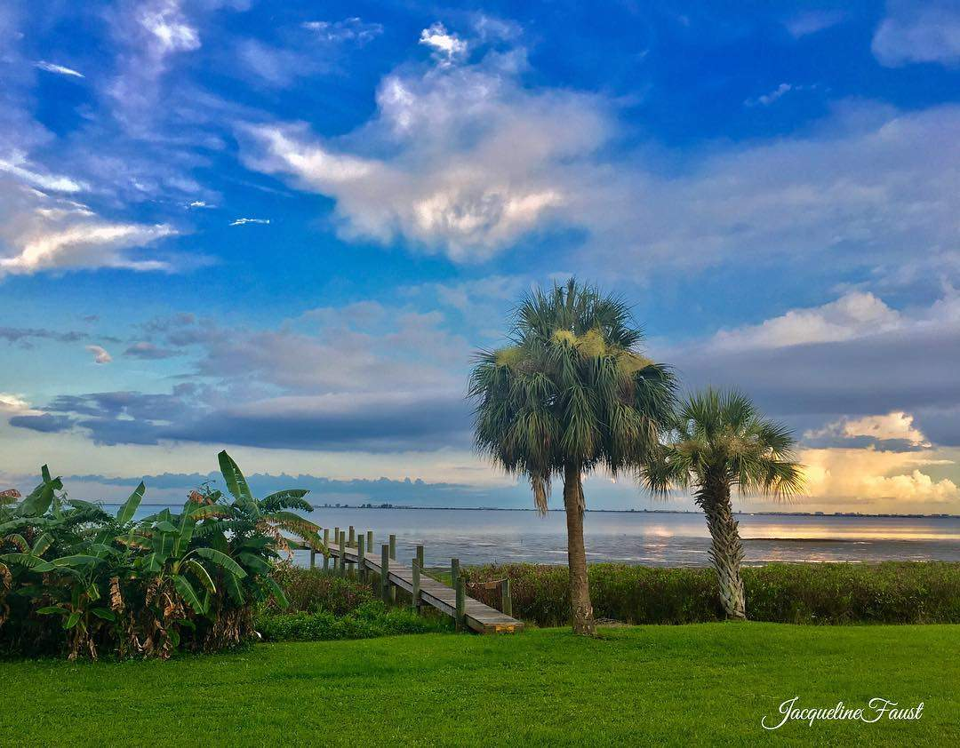 Sooo ...while I am away visiting my good pals up North...enjoying the rainy day (😂) ...here's a pic from my sunny Florida! Hope your day is abundantly blessed… Wherever you are! 💙🙏🏼 • • • • #fun_in_florida  #LoveFL #instagram_florida  #ig_great_shots_fla  #florida_greatshots #staysaltyflorida  #pureflorida #visitflorida  #igers_tampa  #igersstpete #hashtagflorida #LiveAmplified  #florida.is #bella_shots #main_vision #ig_photostudio #people_and_world #lost_world_treasures  #bns_family #master_shots #global_captures #splendid_shotz #princely_shotz #globalcapture